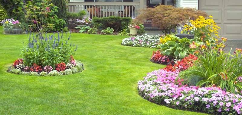Jim Handy Lawn Maintenance & Handyman Services