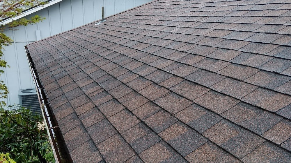 Alpha Roof Care